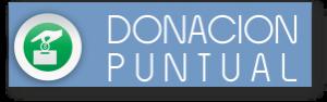 donacion puntual
