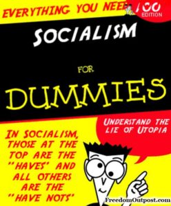 socialism-for-dummies